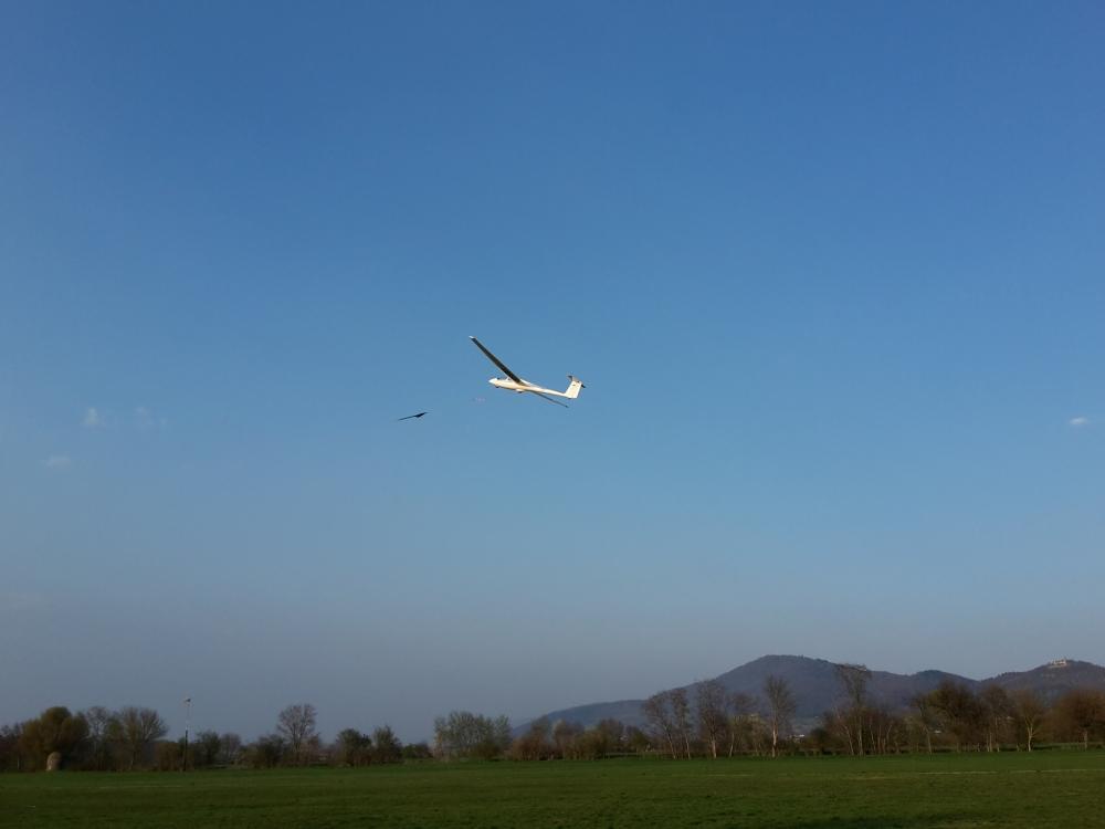 Flugbetrieb Windenstarst ASK-21